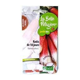 organic-seeds-radishes-vegetables-gardening-vegetable-garden
