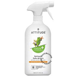 ecological bathroom cleaner