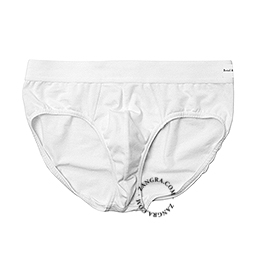 Boxers001_001_s-bread-brief-underwear-slip-onderbroek-ondergoed-sous-vetement
