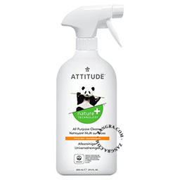 ecological all purpose cleaner