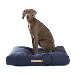 dog-bed-pillow