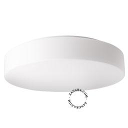 salle-murale-bain-plafonnier-etanche-lampe-applique