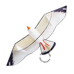 kids.047.002_s-3d-kite-cerf-volant-vlieger