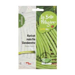 organic-seeds-bean-slendrette-legumes-gardening-vegetable-garden