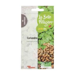 organic-seeds-coriander-gardening-vegetable-garden