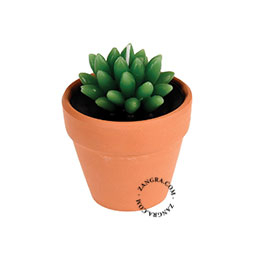 home.050.002_s-candle-bougie-kaars-cactus