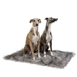 blanket-cat-dog-fur-labbvenn
