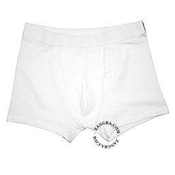 Boxers002_001_s-bread-brief-underwear-slip-onderbroek-ondergoed-sous-vetement