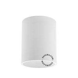 metal-ceiling-lamp-spot-light-LED