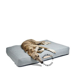 dog-bed-animals-pillow