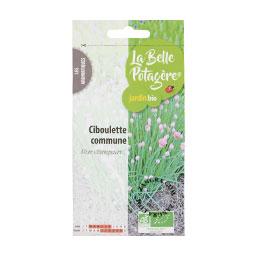 organic-seeds-chives-gardening-vegetable-garden