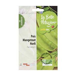 organic-seeds-snow-peas-mangetout-norli-legumes-gardening-vegetable-garden