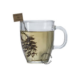 tea.001.005_s-benefique-the-thee-herbal-tea-infusion-tige-thyme-thym-thijm