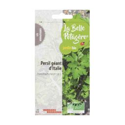 organic-seeds-parsley-giant-italy-gardening-vegetable-garden