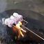 stick-barbecue-campfire-pin-marshmallow