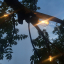 lighting-party-light-garden-rope-string-lights-outdoor