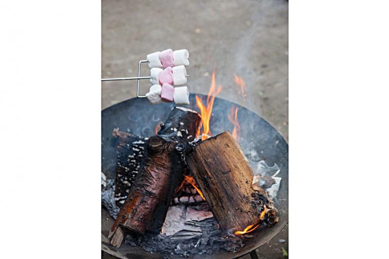 campfire-barbecue-pin-marshmallow-stick