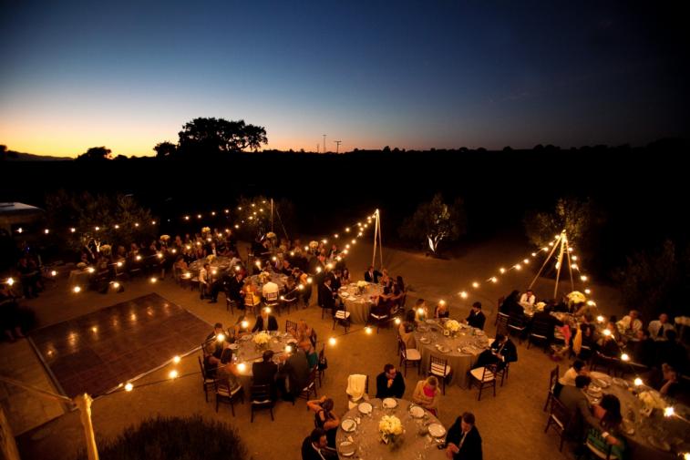 lighting-rope-lights-string-light-outdoor-garden-party