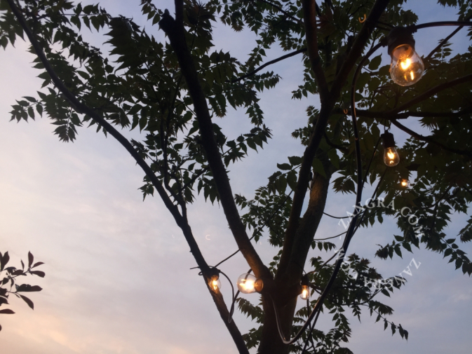 string-outdoor-light-garden-party-lights-rope-lighting